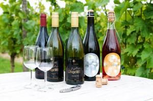 Betuws wijndomein