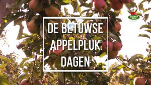 Betuwse Appelplukdagen